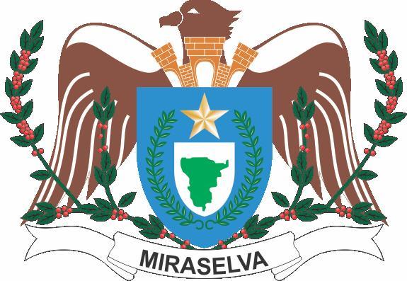 CÃ'MARA MUNICIPAL DE MIRASELVA