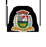 CÂMARA MUNICIPAL DE FÊNIX
