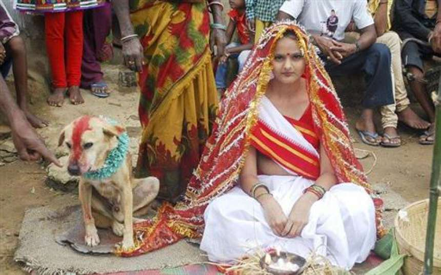 Moça casa com cachorro na Índia para