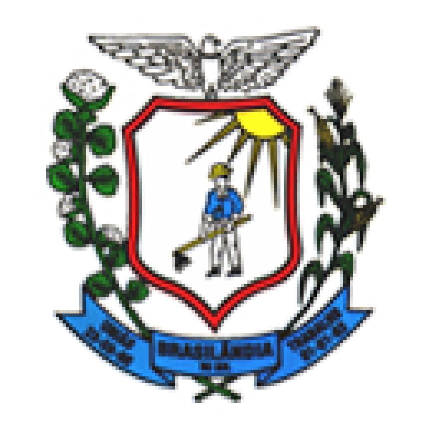 C�MARA MUNICIPAL DE BRASIL�NDIA DO SUL