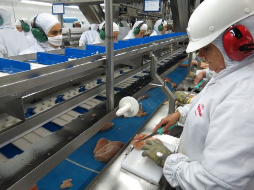 Paraná é o Estado com maior avanço no PIB da indústria de transformação