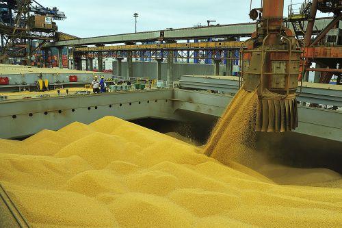 Movimentação no Corredor de Exportação cresce 129% em julho