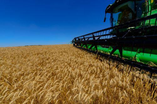 Receita do agronegócio deve crescer mais de 10% em 2018