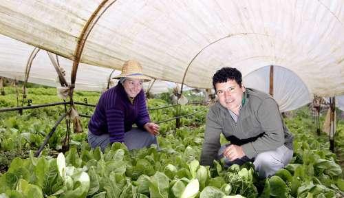 Merenda escolar aumenta renda de pequenos agricultores e evita êxodo