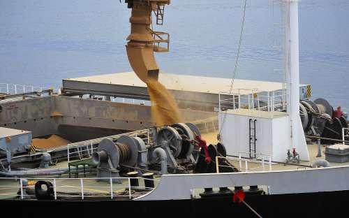 Exportação de grãos por Paranaguá chega a 16,8 milhões de toneladas em novembro