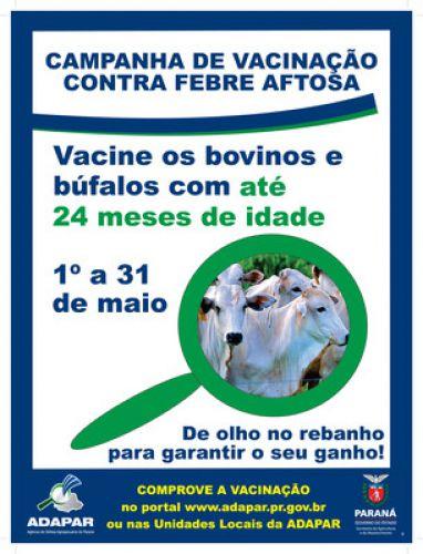 Campanha de Vacinação contra a Febre Aftosa