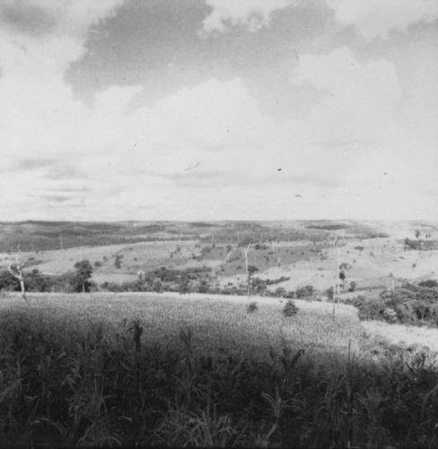 Relevo, vendo-se o uso da terra e reservas de mata  (1960)