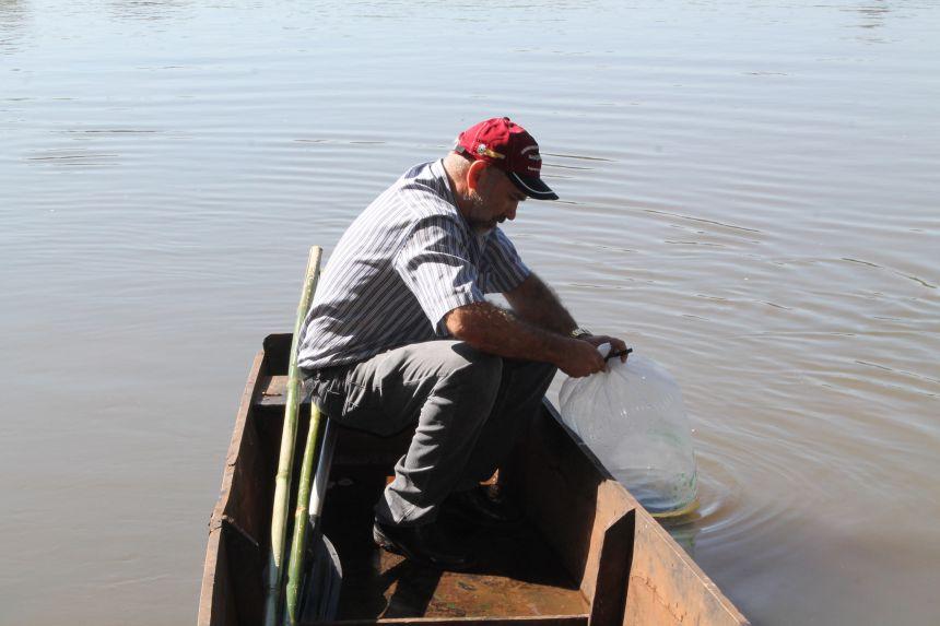 Soltura de Peixes no Rio Ivaí