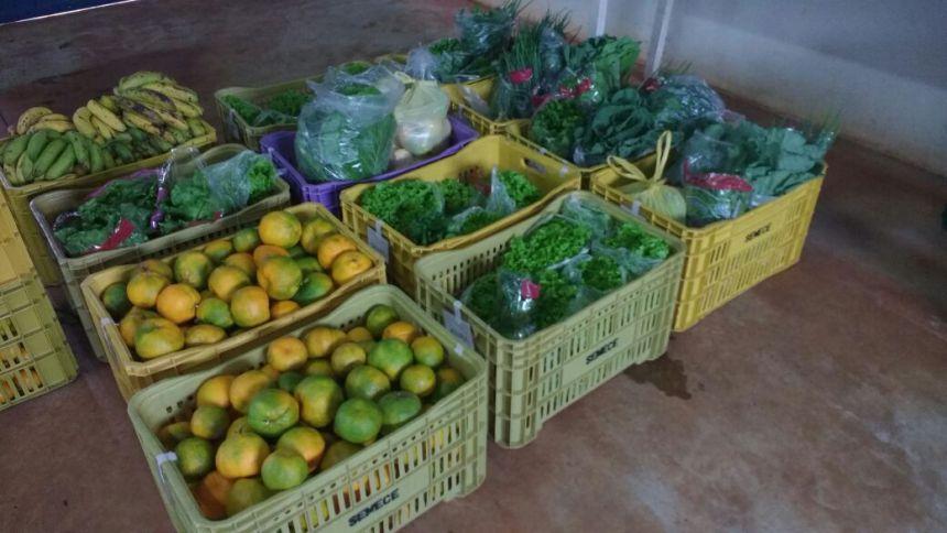 Merenda escolar de Ribeirão Claro tem ingredientes da agricultura orgânica