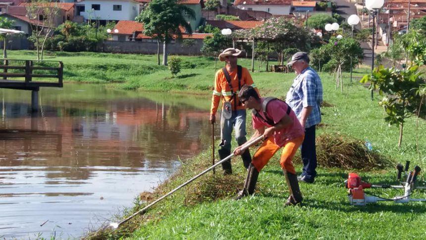 Limpeza Jardim Ambiental Salomão Sogayar