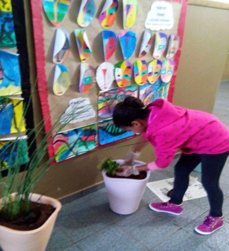 Alunos da Escola José Gavioli aprendem sobre importância das plantas