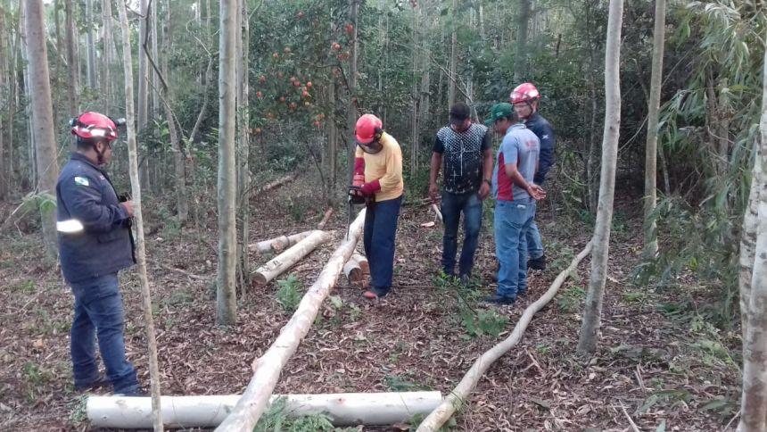 CIPAs do município participam de cursos de Motosserra e de Primeiros Socorros