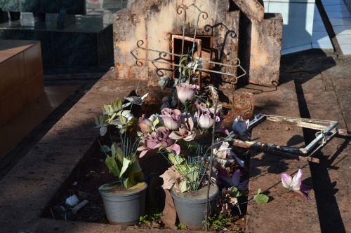 Saúde alerta para possíveis focos de Aedes aegypti nos vasos de flores dos cemitérios