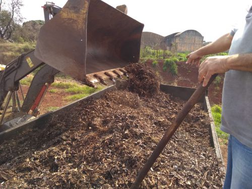 Pequenos agricultores recebem material de poda de árvores