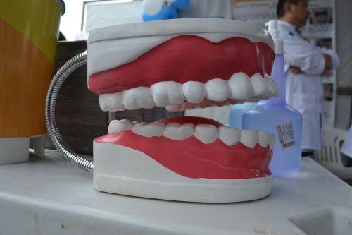 Uma série de atendimentos da Saúde e da Assistência Social marcam o Dia do Cirurgião Dentista
