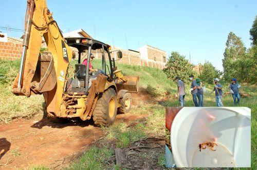 Prefeitura  e vigilância sanitária realizam arrastão para capturar escorpiões
