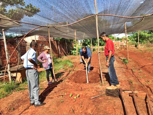 Administração de São Tomé promove Projeto Horta Terapêutica