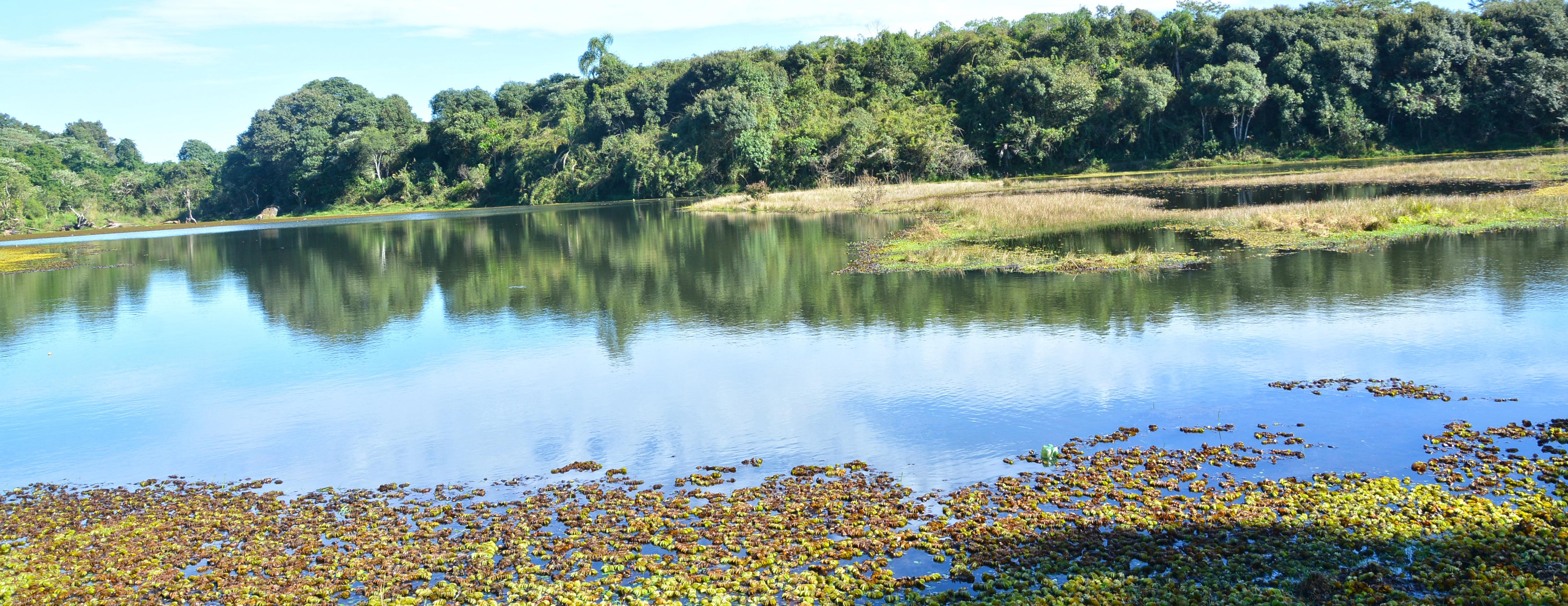 Lagoa Negra - Comunidade Dodge