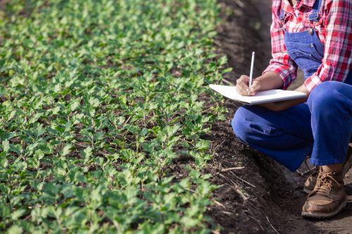"""Prefeitura de Turvo e SEBRAE convidam os produtores rurais para a oficina """"Sei controlar meu dinheiro no campo"""""""