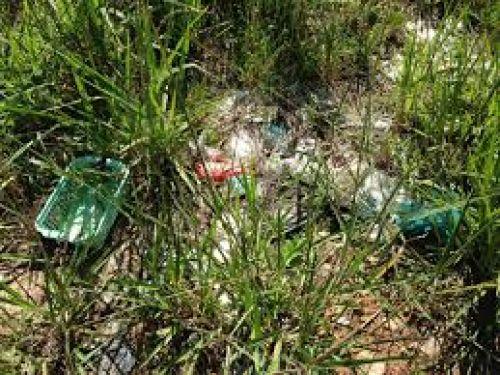Secretaria de Meio Ambiente se mobiliza no combate à dengue