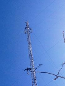 Município de Nova Aurora realiza reparos em torres de internet do Nova Aurora Digital