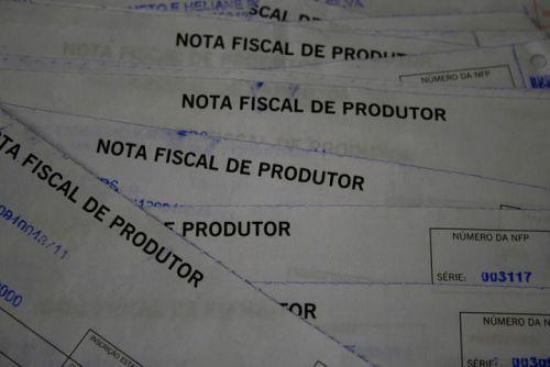 Prazo para regularização de notas do produtor rural encerra - se dia 29/03