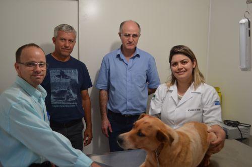 Município de Nova Aurora lança projeto de Castração de Cachorros para famílias cadastradas no CadÚnico