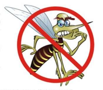Nova Aurora contabiliza 12 casos de Dengue