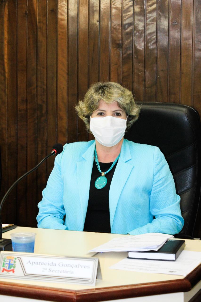 Maio Laranja é aprovado pelo Legislativo Paranavaiense