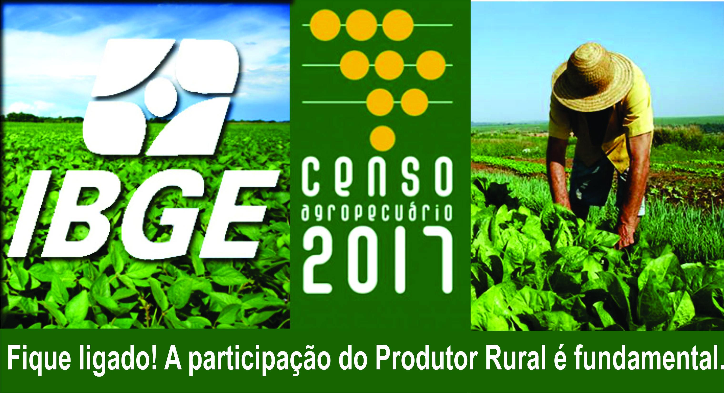 IBGE da inicio ao Censo Agropecuário 2017