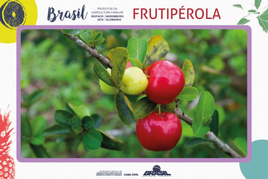 FRUTIPÉROLA é destaque na Biofach 2018.