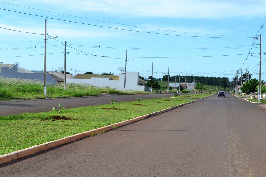 Arborização da avenida Presidente Getúlio Vargas