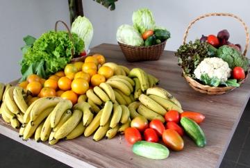I Conferência Municipal de Segurança Alimentar e Nutricional de Mandaguaçu