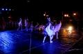 Apresentação de Ballet/Jazz 2013