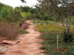 BELEZA NO SITE...Bosque da Família, um lindo local de lazer em Floraí, ainda não aberto ao publico