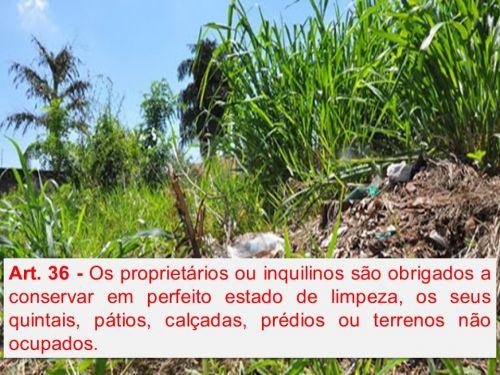 A Prefeitura Municipal de Roncador alerta proprietários e inquilinos sobre limpeza de terrenos