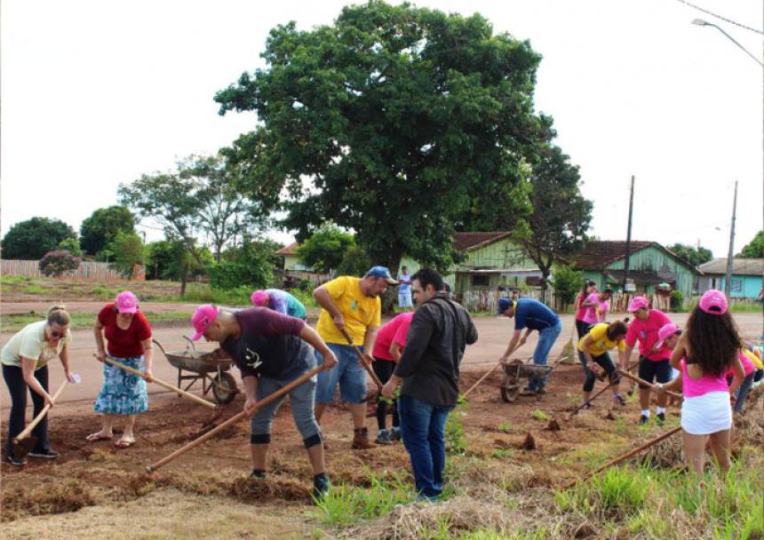 Saída para Araruna recebe revitalização e 150 mudas de flores