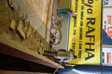 Prefeitura de Peabiru investe na reforma do gin&aa
