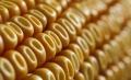 Justiça proíbe venda de milho transgênico no Norte e Nordeste do Brasil...