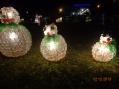 61° Aniversário de Santo Inácio e inauguração do Natal Iluminado...