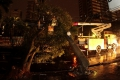 Temporal deixa bairros de Maringá no escuro e derruba 29 árvores...