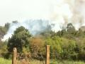 Incêndio ambiental atinge terreno do Exército em Ponta Grossa...