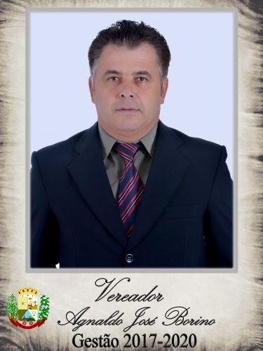 Agnaldo José Borino - PRIMEIRO SECRETÁRIO - PRB