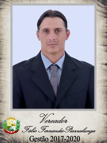 Fábio Fernandes Piazzalunga - PMDB