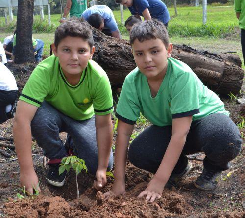 Alunos plantam mudas de árvores no Parque Ambiental de Imbituva