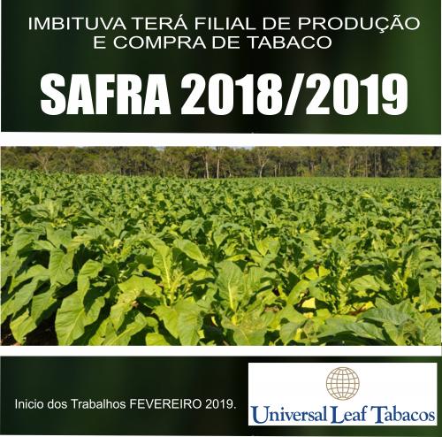 Imbituva terá filial de produção e compra de tabaco.