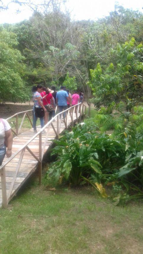 Secretaria de Assistência Social realiza passeio com idosos e mulheres no Parque Vila do Café