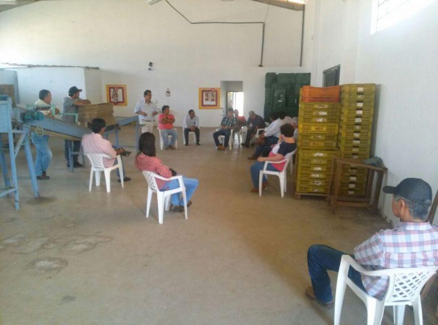 Pesquisadores na área de Fruticultura visitam Carlópolis
