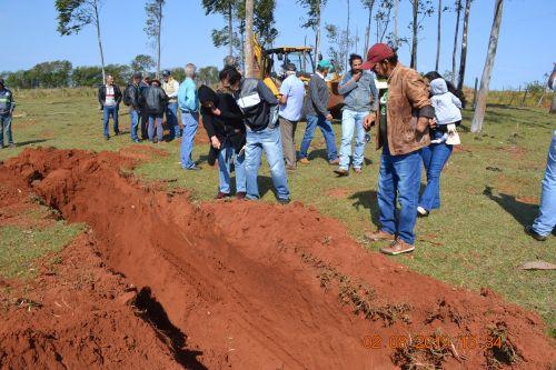 Semana de combate a formigas cortadeira