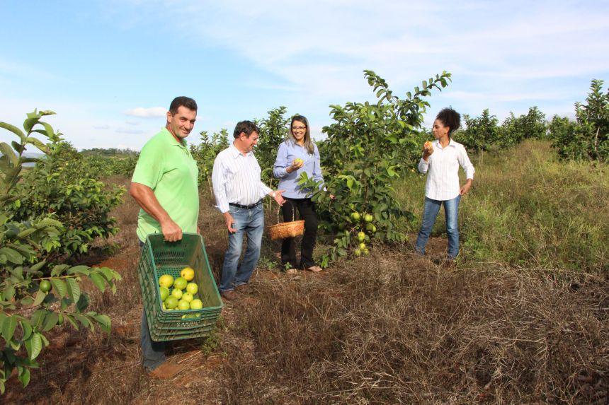 Edson Magri recebe visita de Adir Salla, Rosana Pagé e Maria Helena da Cruz, que aproveita para conferir uma goiaba colhida no pé